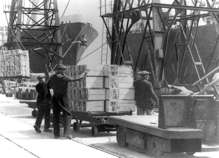 Cases of New Zealand apples being unloaded at the Royal Docks in 1949