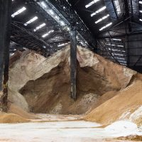 Mountain of raw sugar in a warehouse