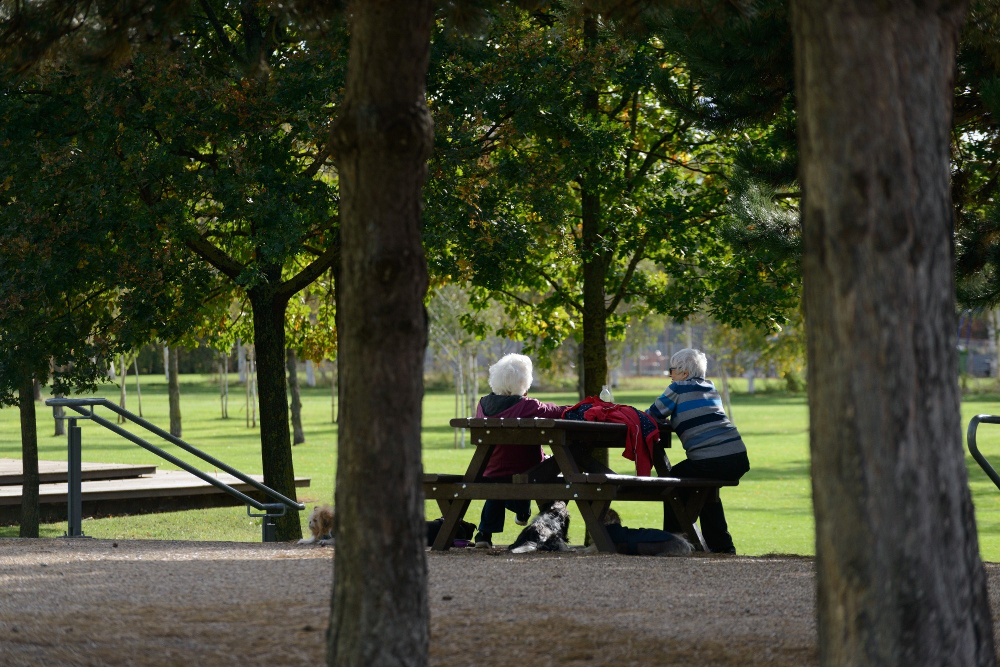 A couple in Thames Barrier Park