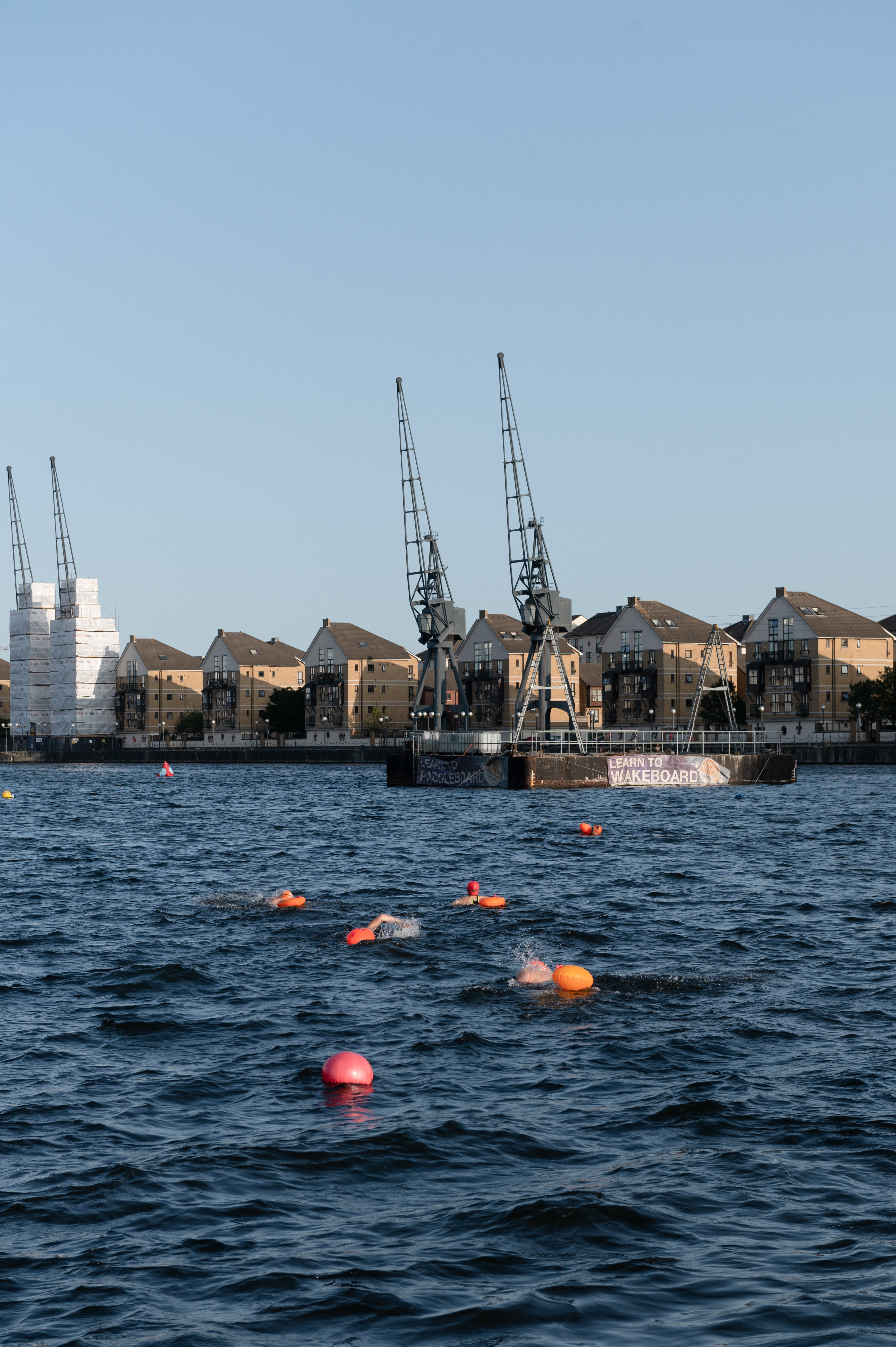 Blue dock water and cranes, with a few swimmers in orange caps