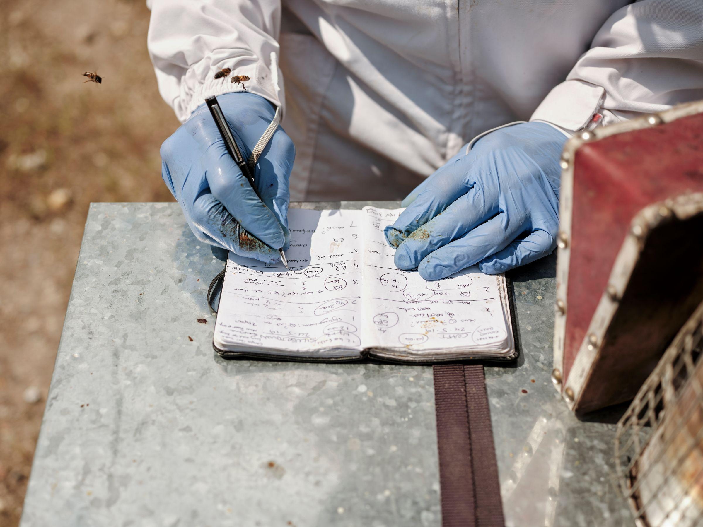A beekeeper taking notes