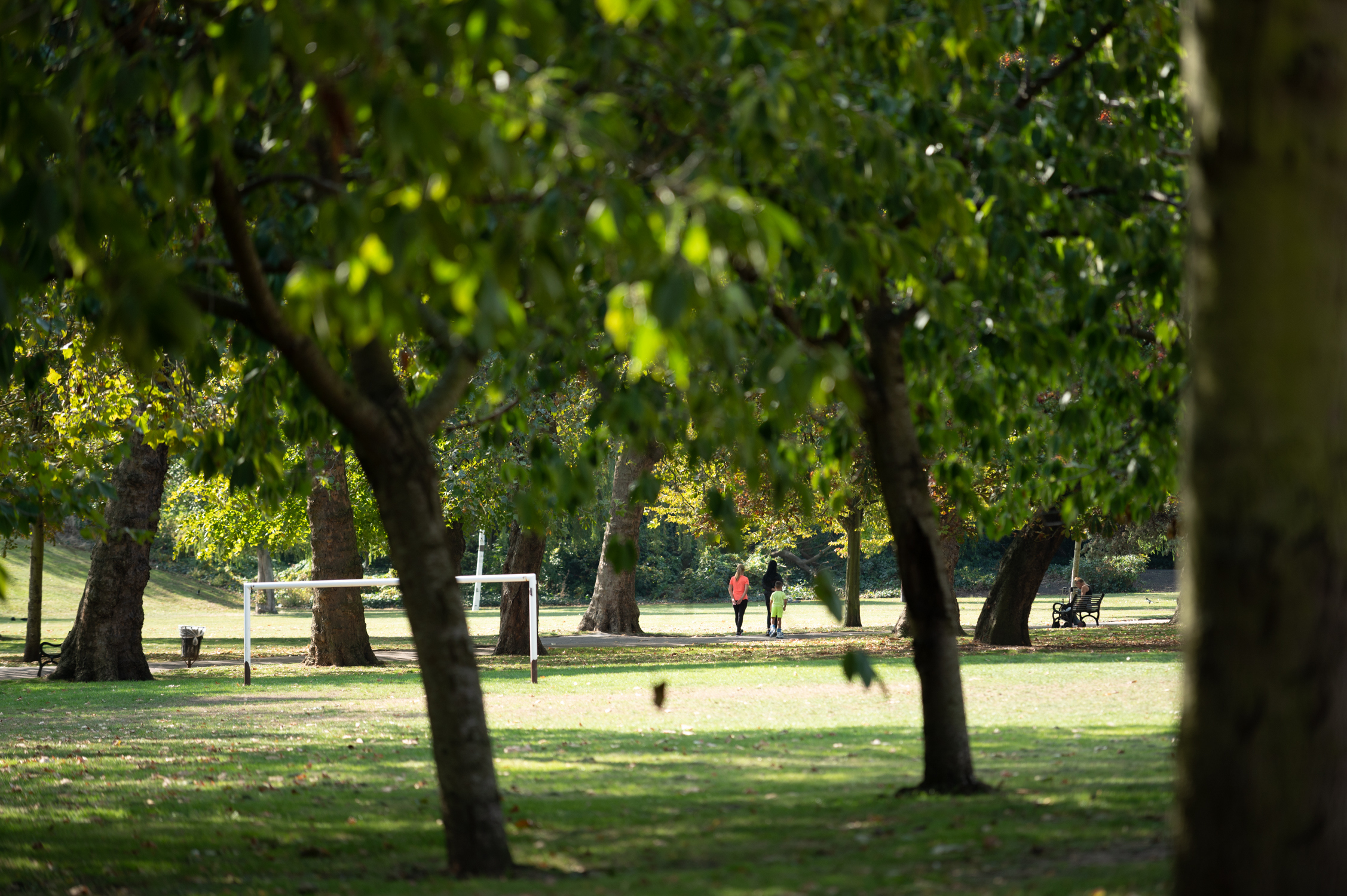 Park scene with trees and football goals