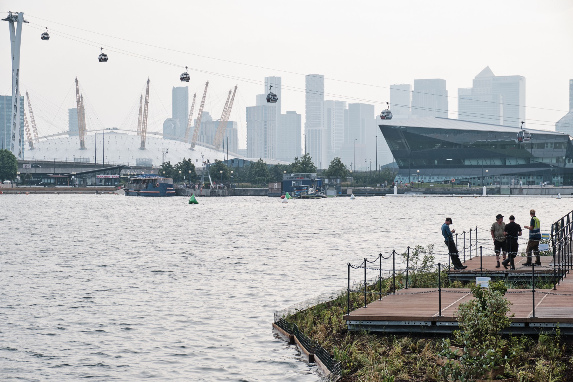 View of the Royal Docks floating garden with the Millennium dome in the background