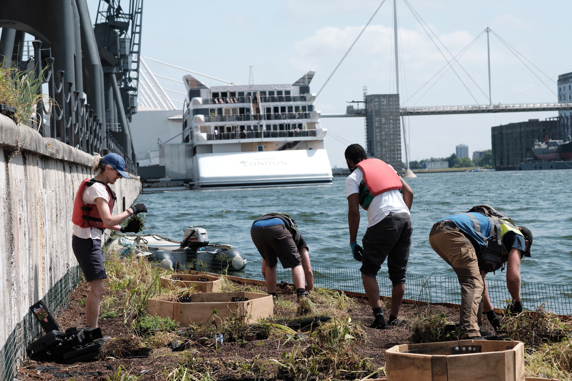 Royal Docks floating garden volunteers at work with Sunborn yacht in the background