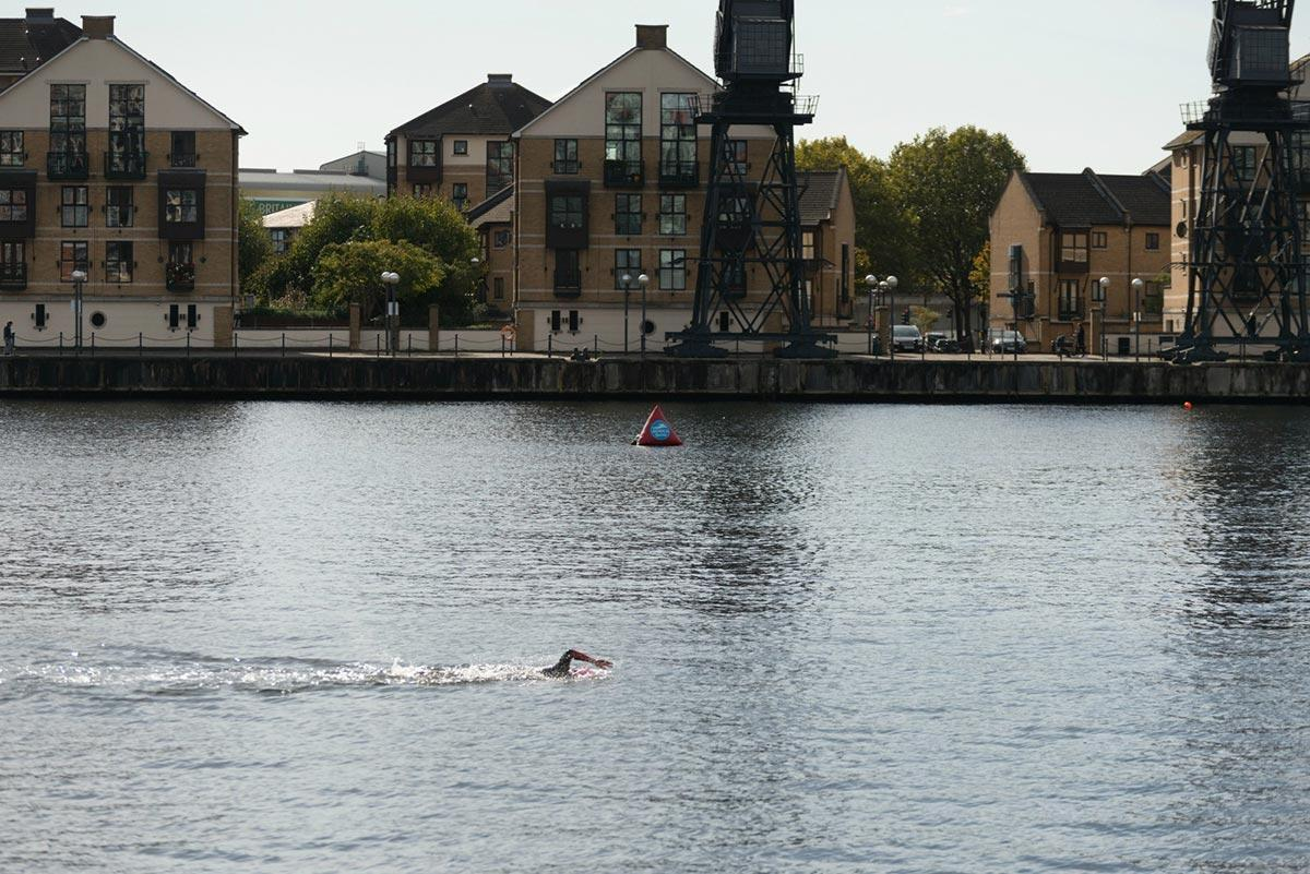 An open swimmer in the Royal Docks