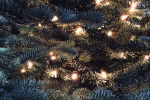 Custom House Christmas Lights